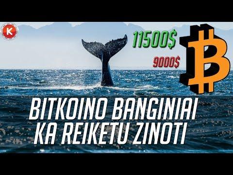 Kur geriau pirkti bitkoinus už eurų. Bittrex & Bitfinex strategija